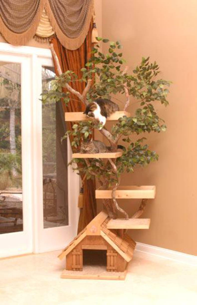 Place of Residence for Cats by Pet Tree House