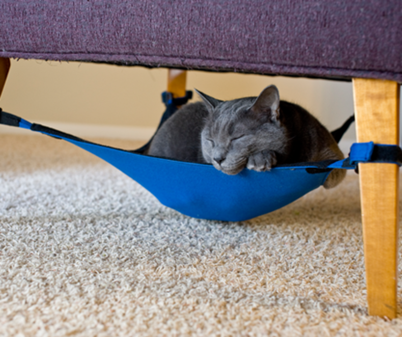 Cat Crib for Your Pets