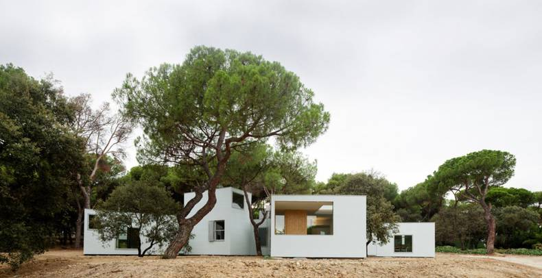 MO House among the Trees by FRPO