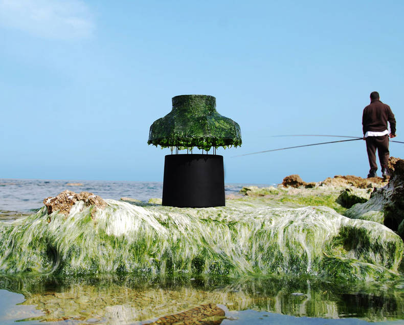 'Marine light' Made of Seaweed by Nir Meiri